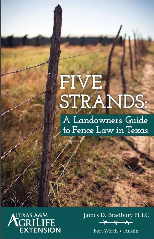 Five Strands Book Cover