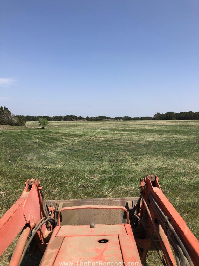 Completetly shredded pasture