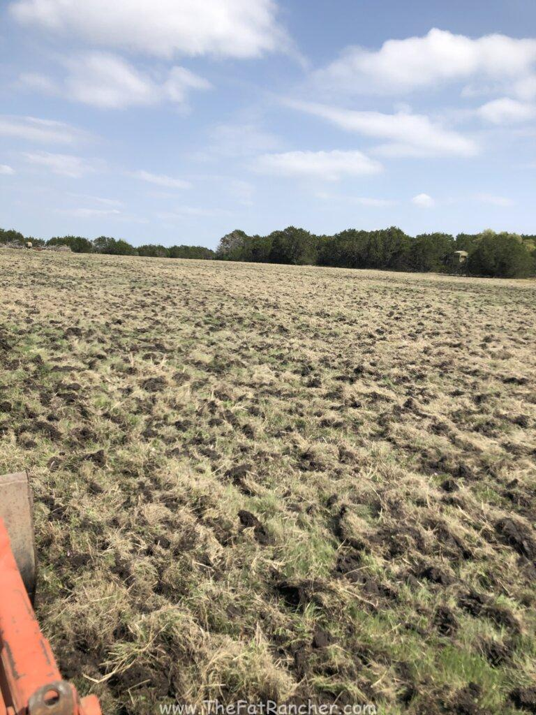 Disced pasture